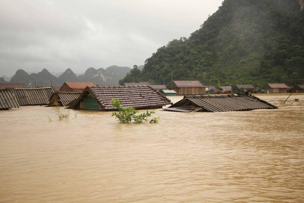 flood-1024x683-4