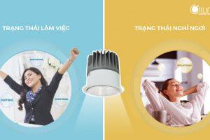 Hiểu về HCL – công nghệ chiếu sáng có lợi cho nhịp sinh học con người